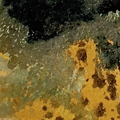 black forest-detail-1