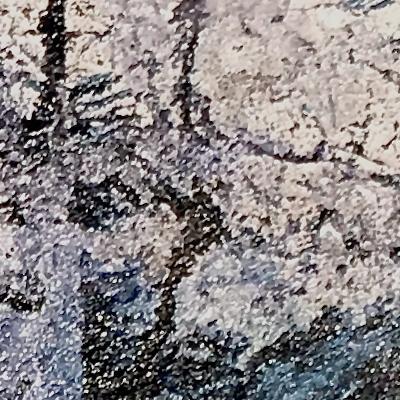 black forest-detail-2